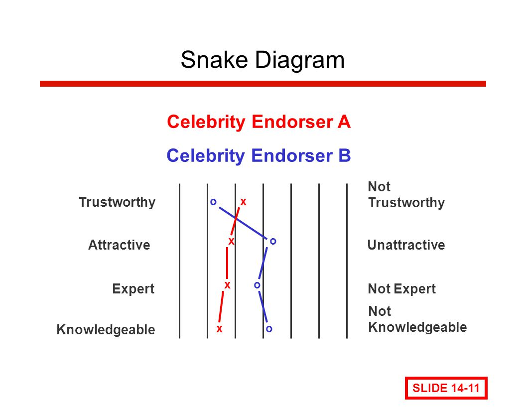 Snake Diagram Celebrity Endorser A Celebrity Endorser B Trustworthy