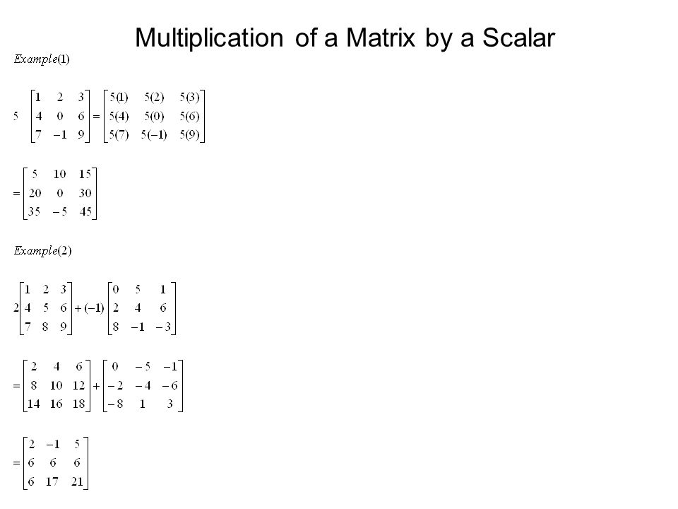 Multiplication of a Matrix by a Scalar