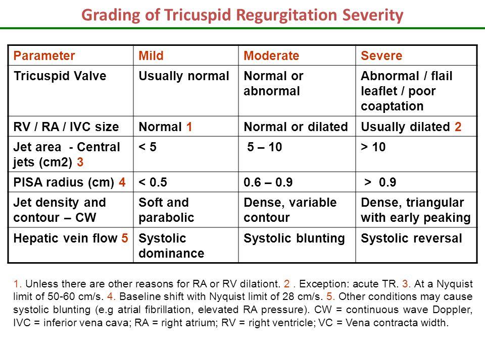 Grading Of Tricuspid Regurgitation Severity