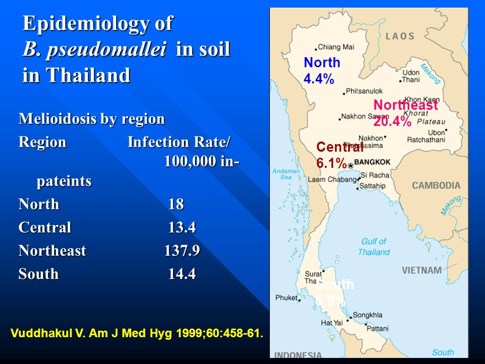 Epidemiology of B. pseudomallei in soil in Thailand