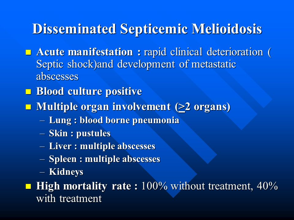 Disseminated Septicemic Melioidosis