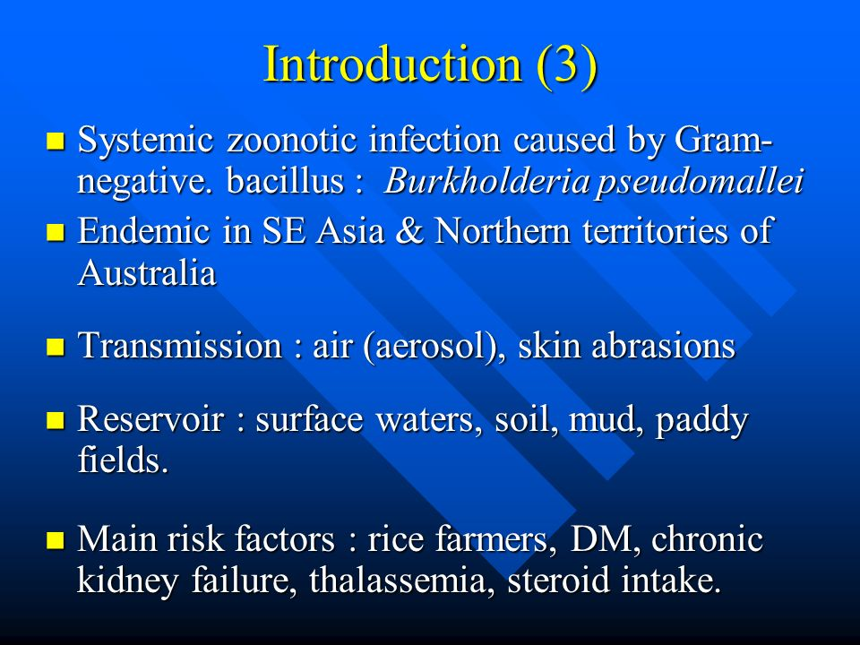 Introduction (3) Systemic zoonotic infection caused by Gram-negative. bacillus : Burkholderia pseudomallei.