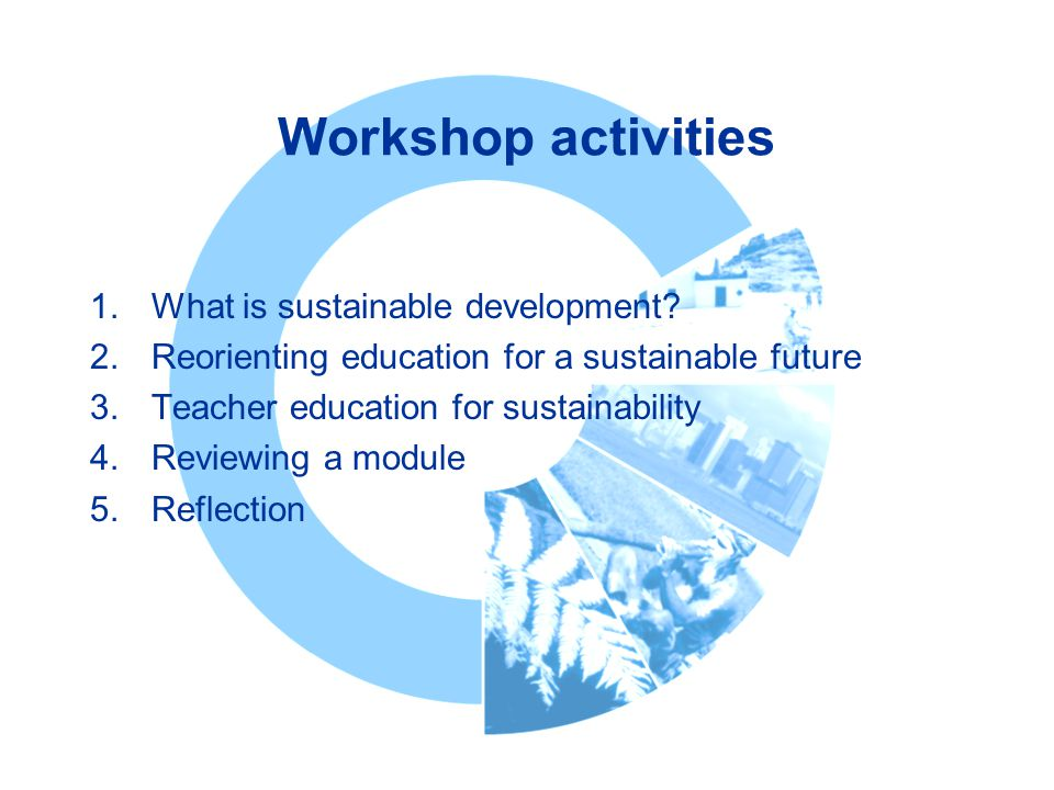 Workshop activities What is sustainable development