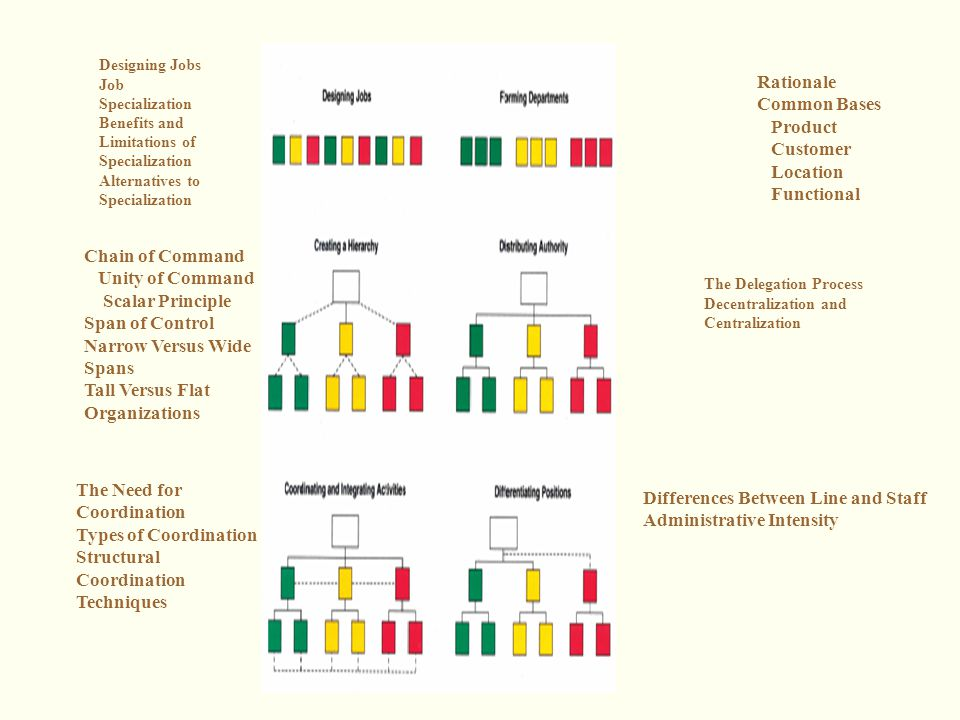 flat and tall organizations
