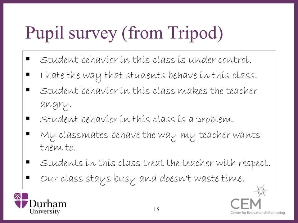 Pupil survey (from Tripod)