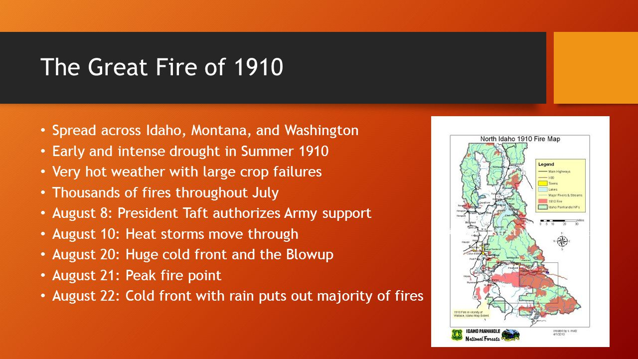 Forest Fires Public Policy Ppt Video Online Download