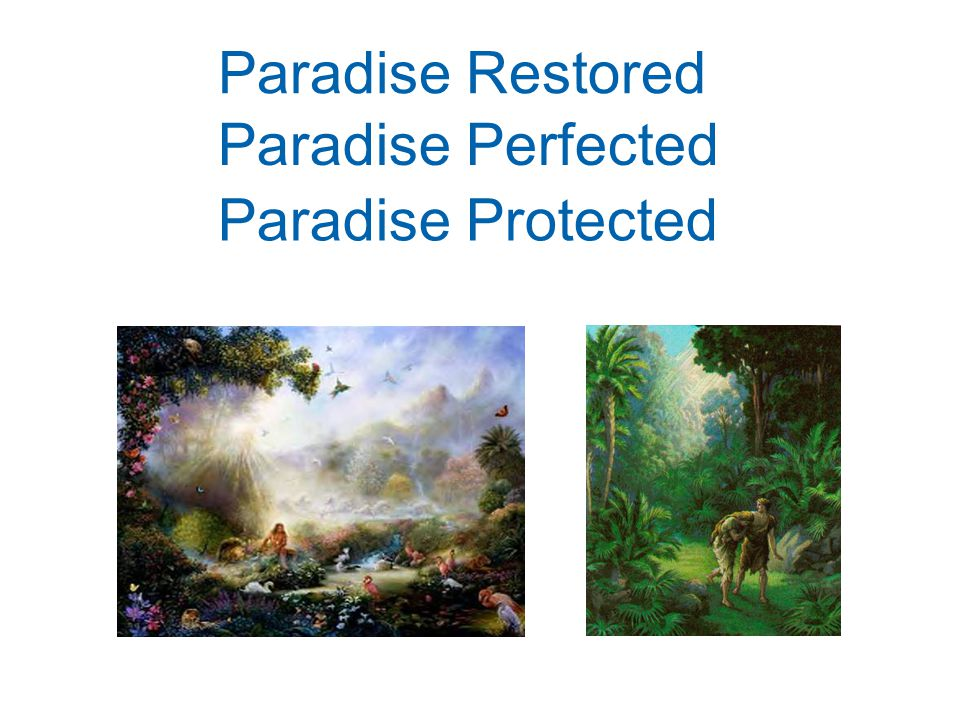 Paradise Restored Paradise Perfected Paradise Protected