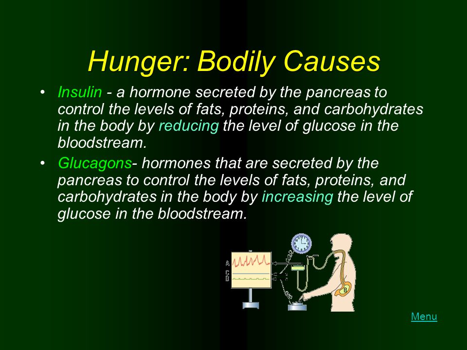 Hunger: Bodily Causes