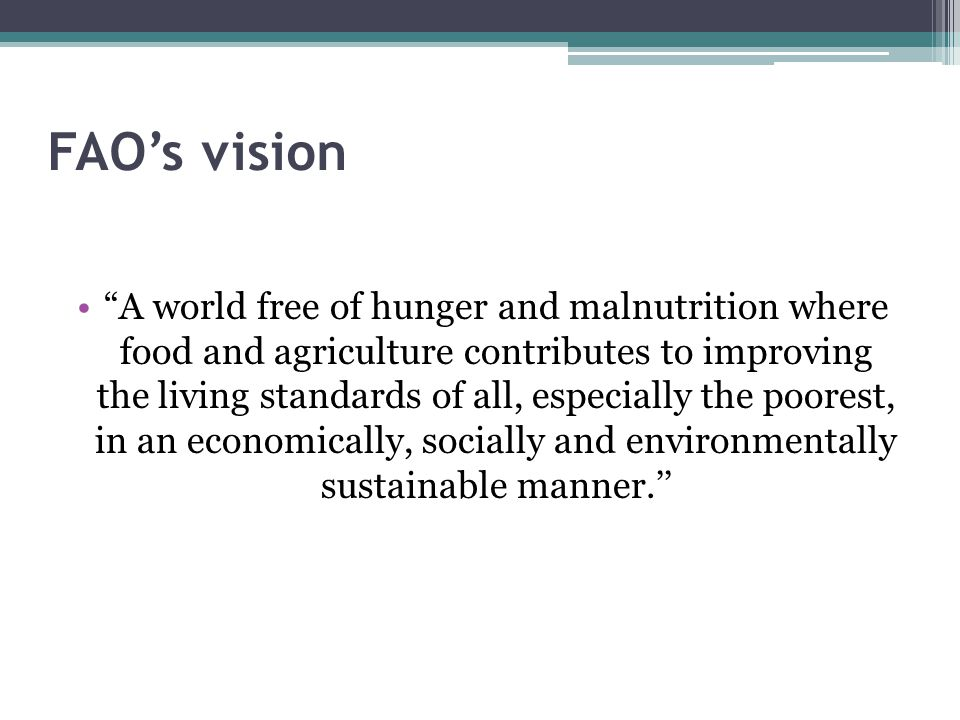 FAO's vision