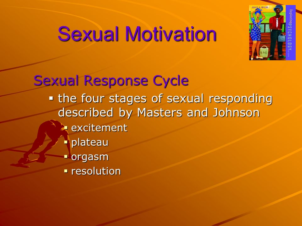Sexual Motivation Sexual Response Cycle