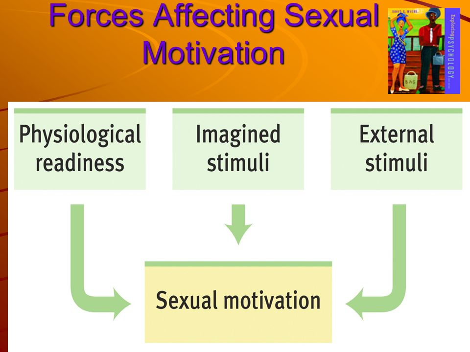 Forces Affecting Sexual Motivation