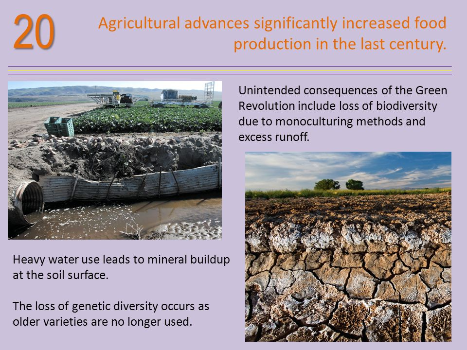 20 Agricultural advances significantly increased food production in the last century.