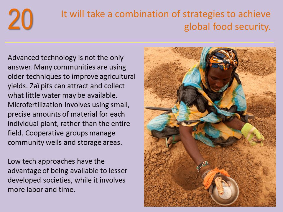 20 It will take a combination of strategies to achieve global food security.