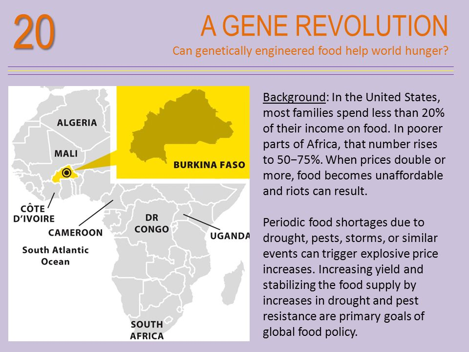 20 A GENE REVOLUTION. Can genetically engineered food help world hunger