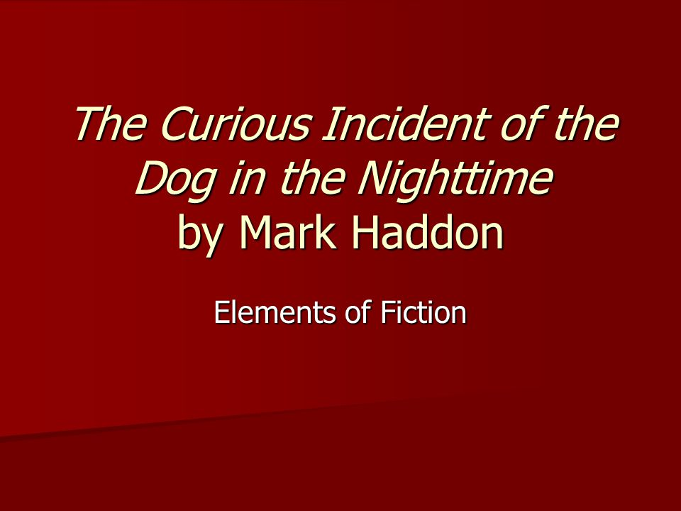 The Curious Incident of the Dog in the Nighttime by Mark Haddon