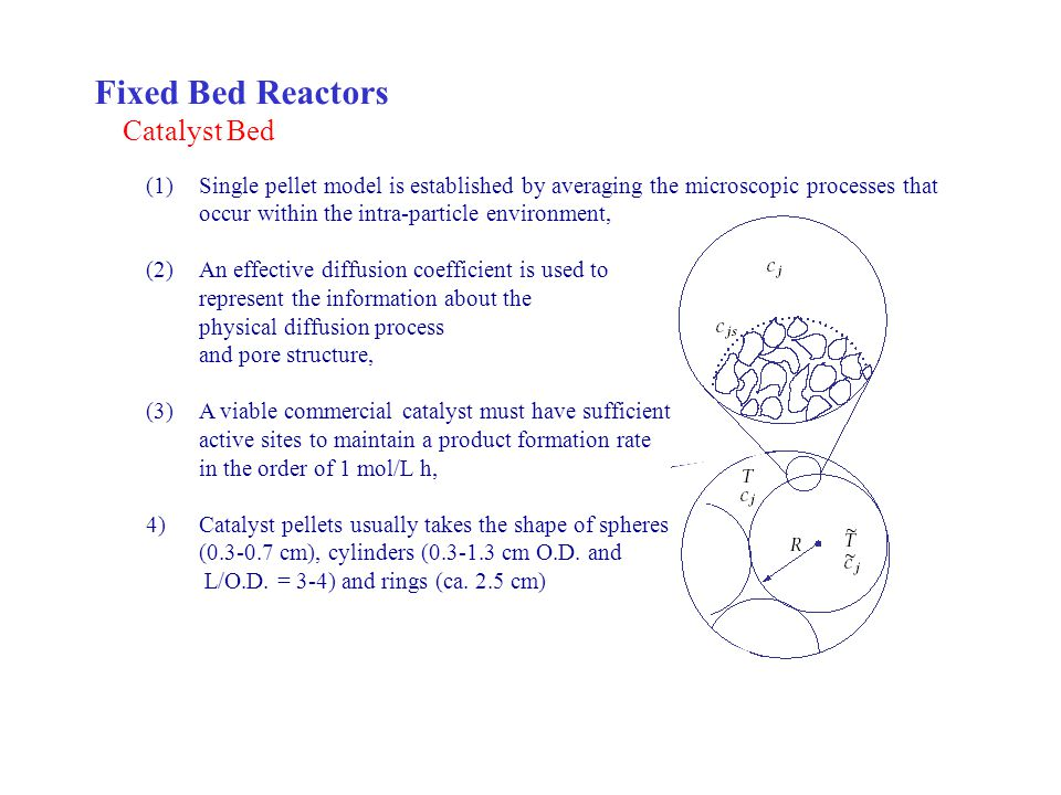 Fixed Bed Reactors Catalyst Bed
