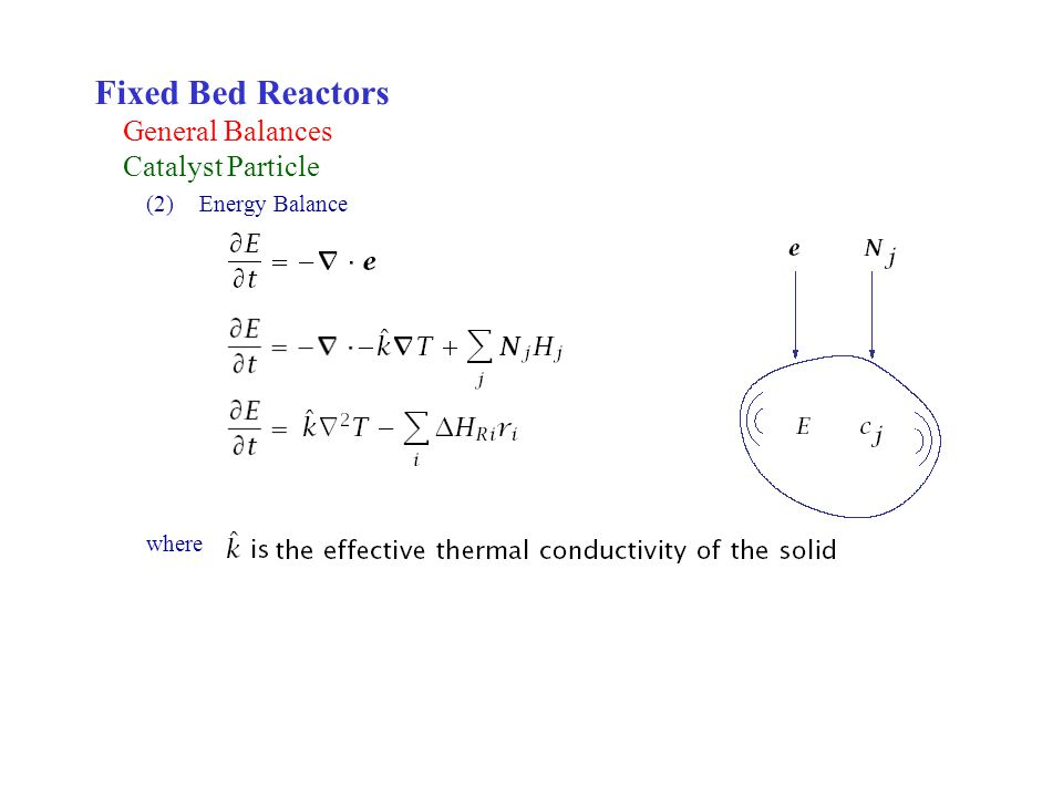 Fixed Bed Reactors General Balances Catalyst Particle Energy Balance