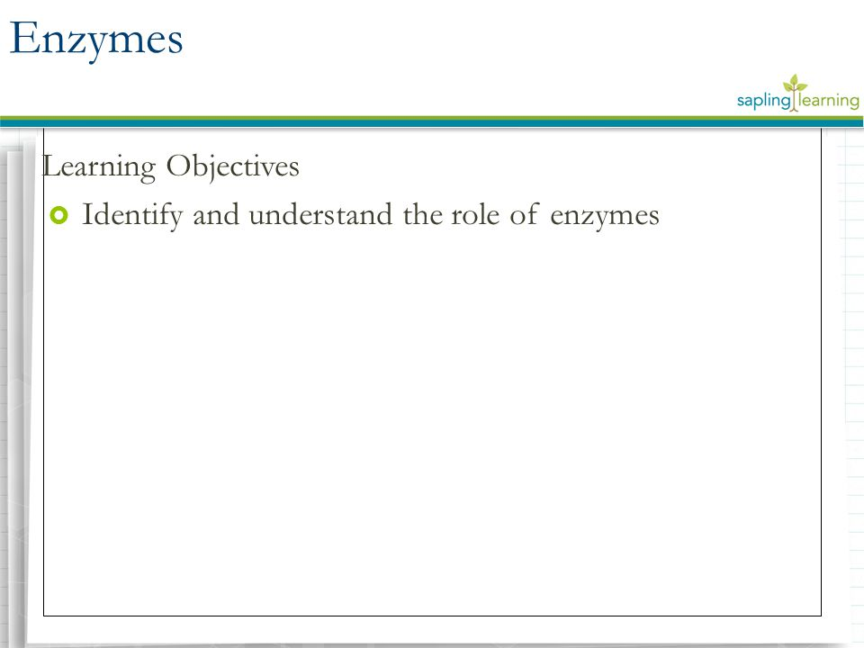 Enzymes Learning Objectives