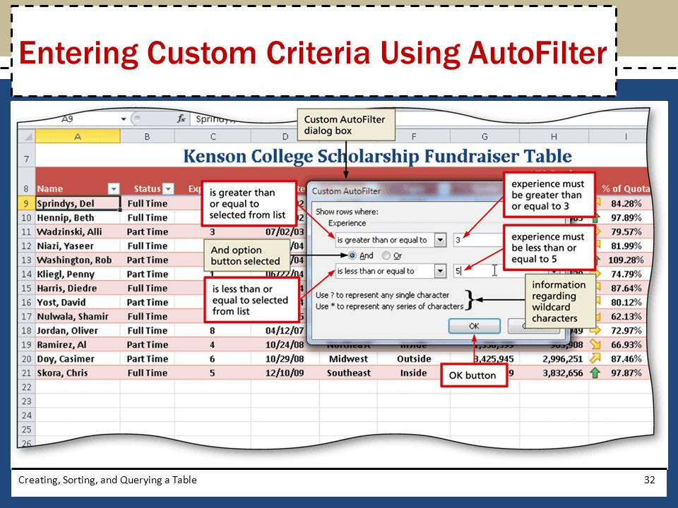 Entering Custom Criteria Using AutoFilter