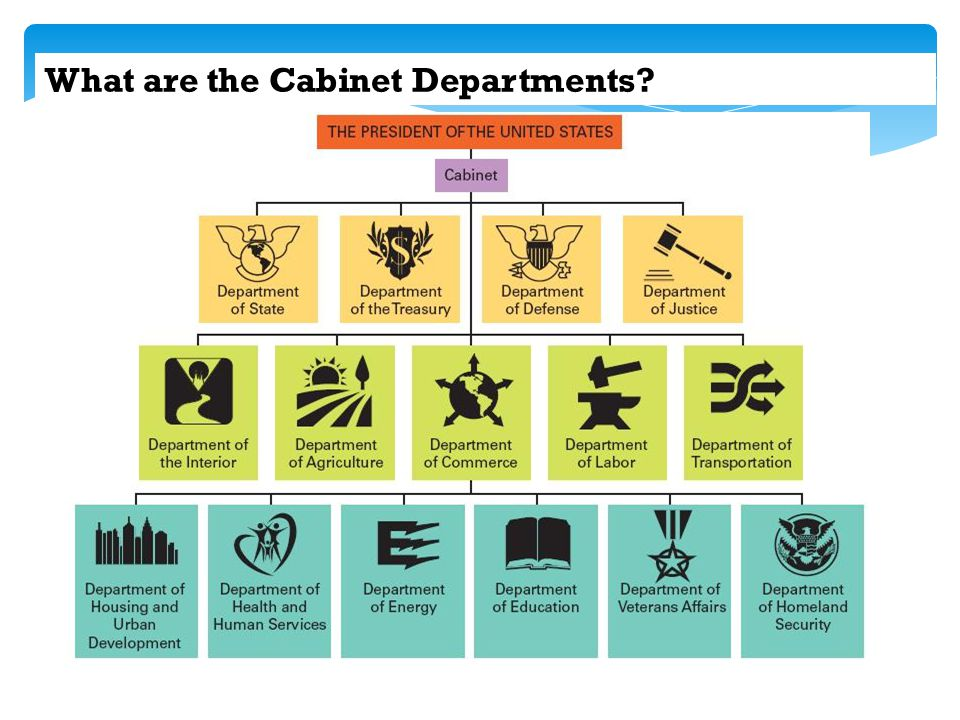 15 cabinet departments 9 the executive branch and the federal bureaucracy ppt 10034