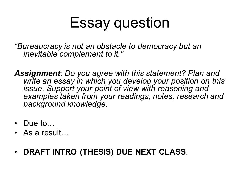 bureaucratic accountability whos in charge   ppt video online   essay