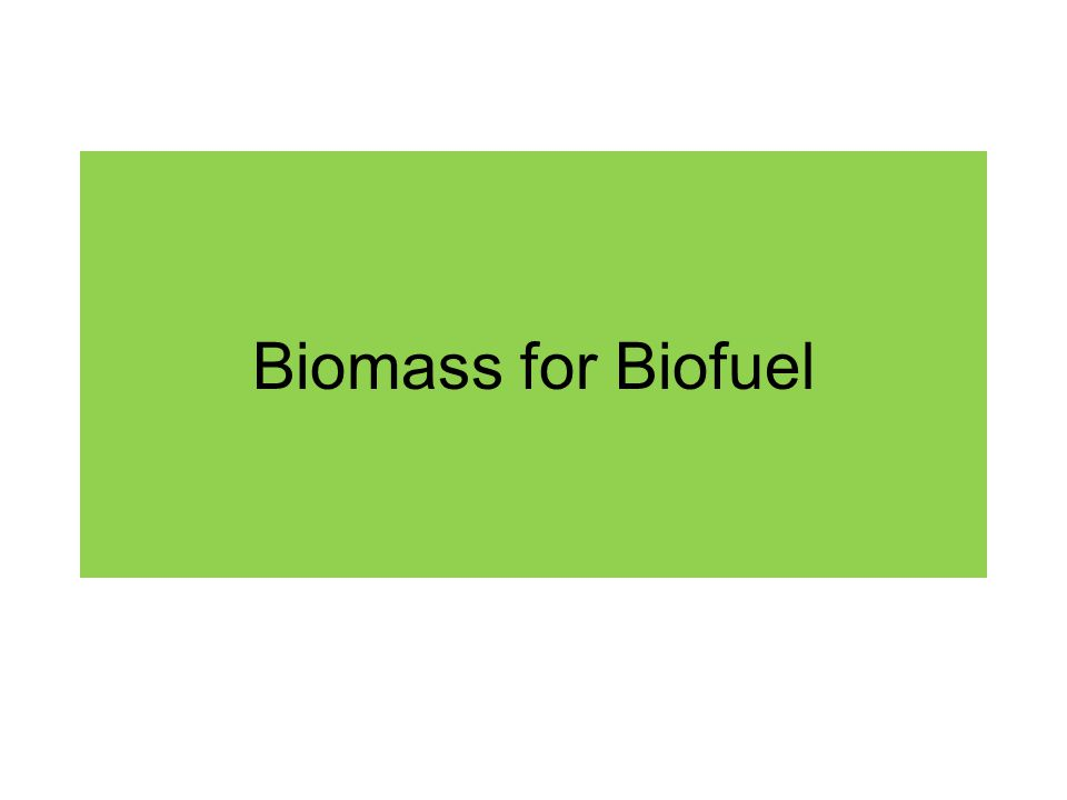 Biomass for Biofuel