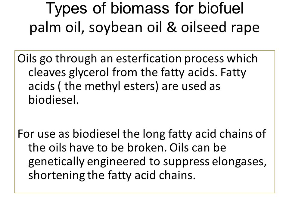 Types of biomass for biofuel palm oil, soybean oil & oilseed rape