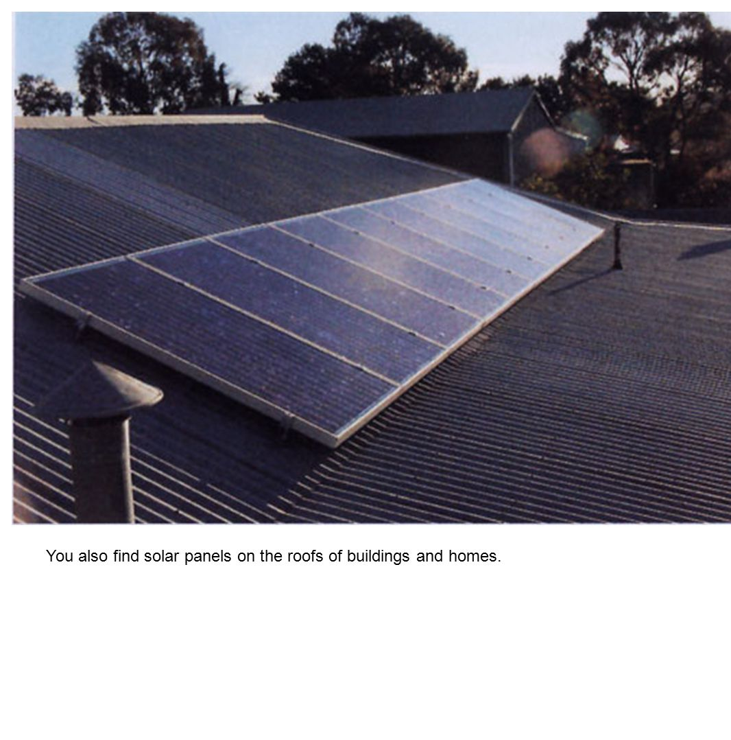 You also find solar panels on the roofs of buildings and homes.