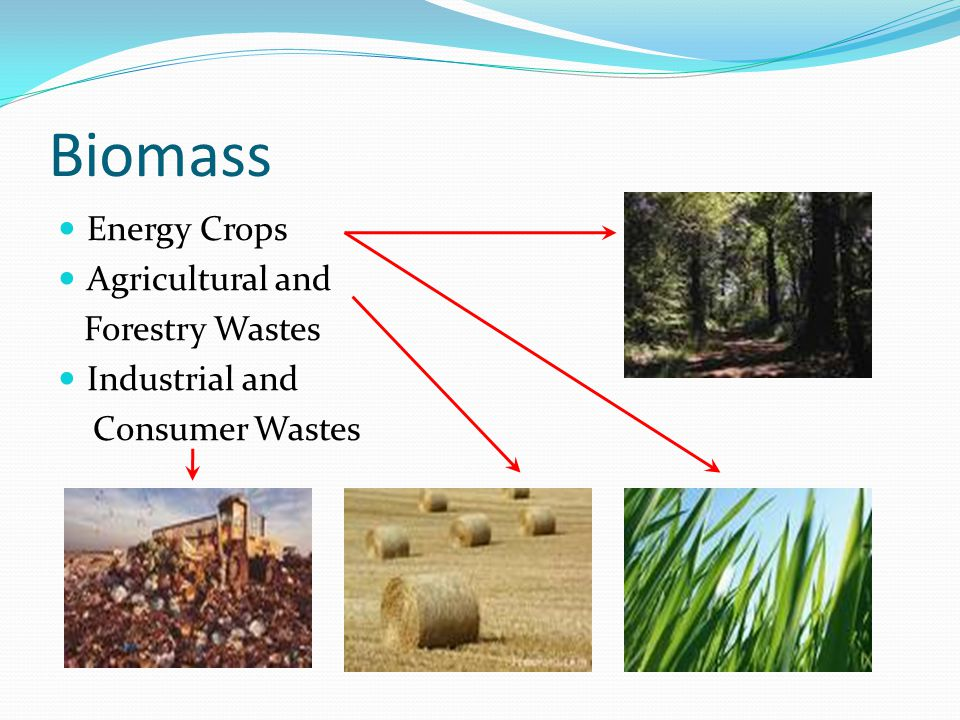 Biomass Energy Crops Agricultural and Forestry Wastes Industrial and