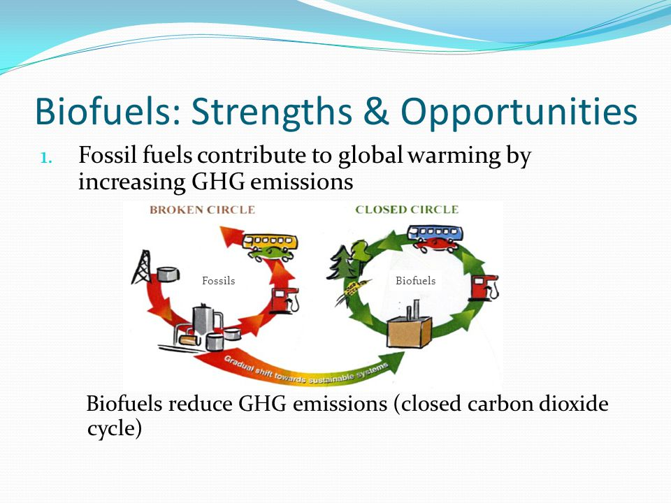 Biofuels: Strengths & Opportunities