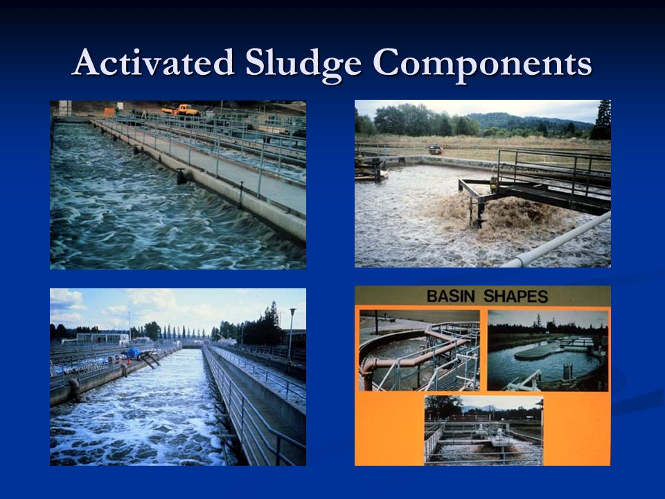Activated Sludge Components