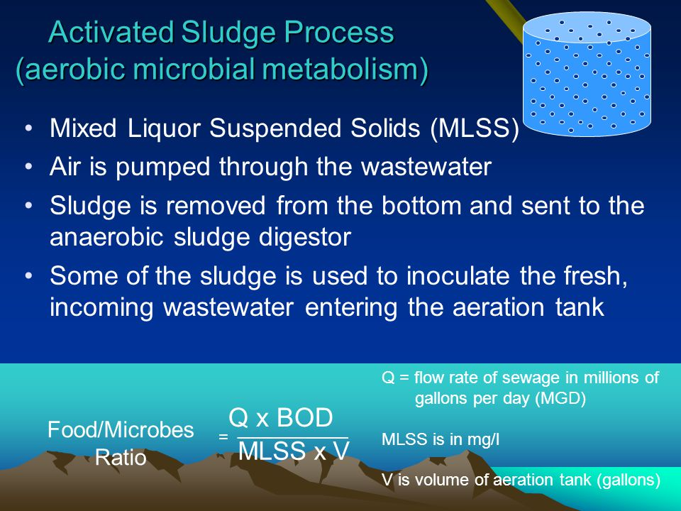 Activated Sludge Process (aerobic microbial metabolism)