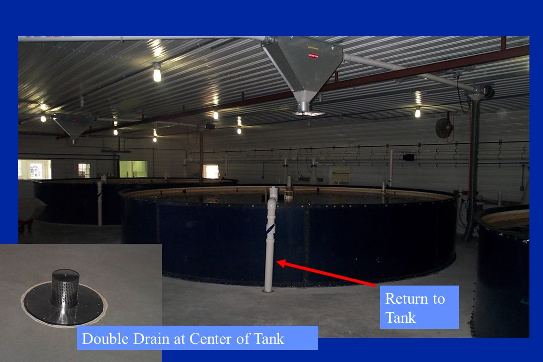 Return to Tank Double Drain at Center of Tank