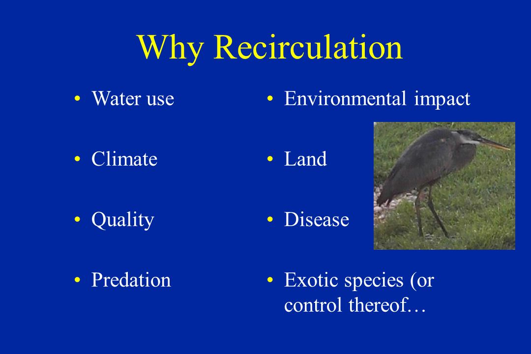 Why Recirculation Water use Climate Quality Predation