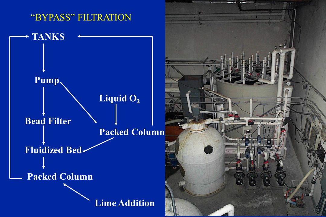 BYPASS FILTRATION TANKS. Pump. Liquid O2. Bead Filter. Packed Column. Fluidized Bed. Packed Column.
