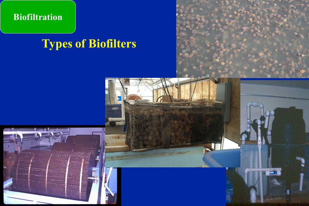 Biofiltration Types of Biofilters