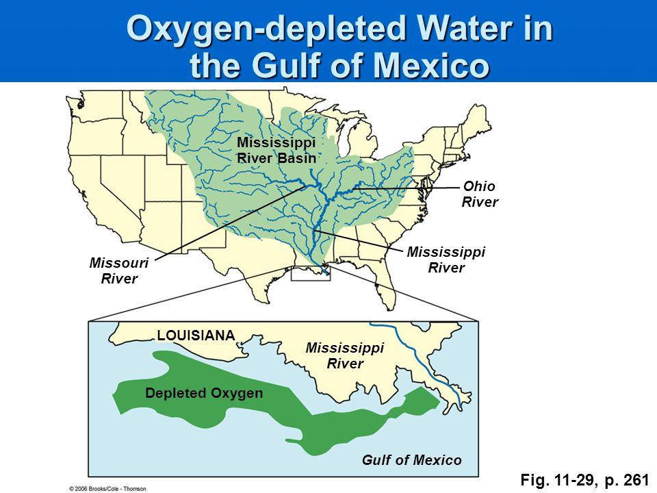 Oxygen-depleted Water in the Gulf of Mexico