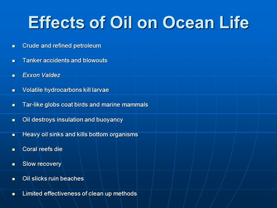 Effects of Oil on Ocean Life