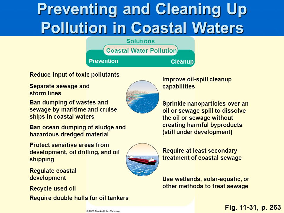 Preventing and Cleaning Up Pollution in Coastal Waters