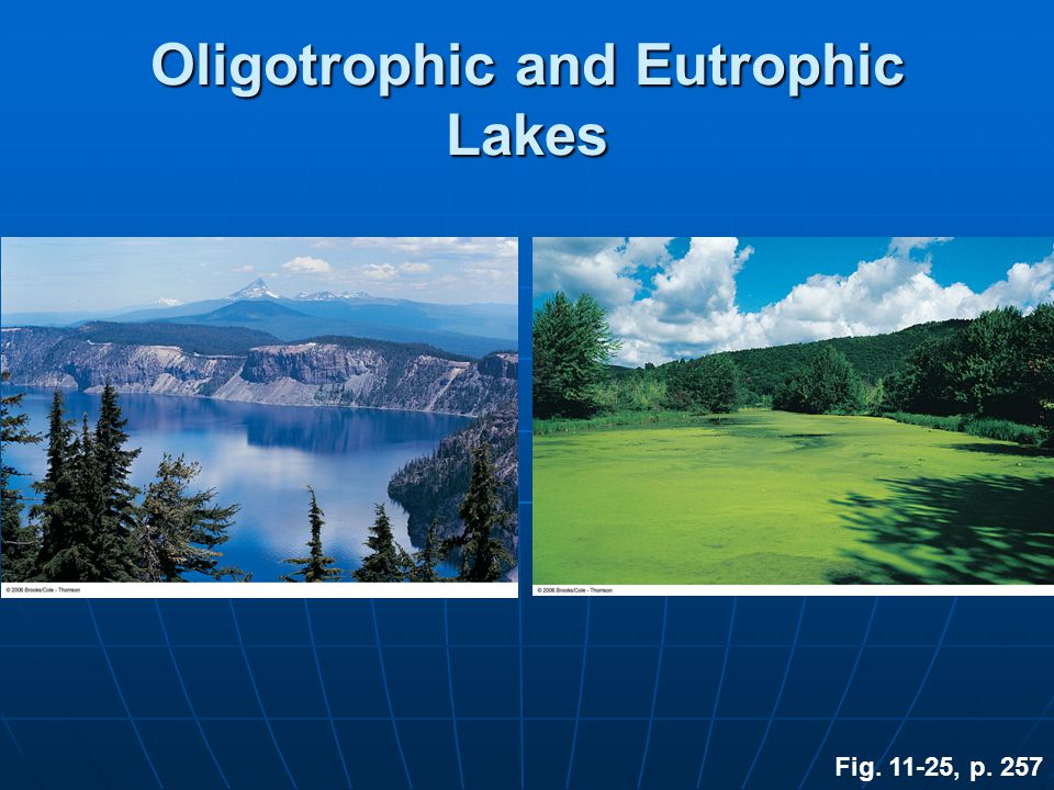Oligotrophic and Eutrophic Lakes