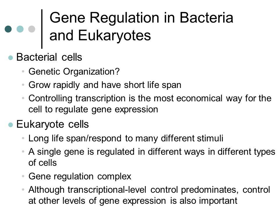AP Biology Chapter 13: Gene Regulation - ppt video online