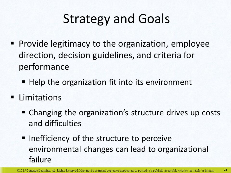 Strategy and Goals Provide legitimacy to the organization, employee direction, decision guidelines, and criteria for performance.