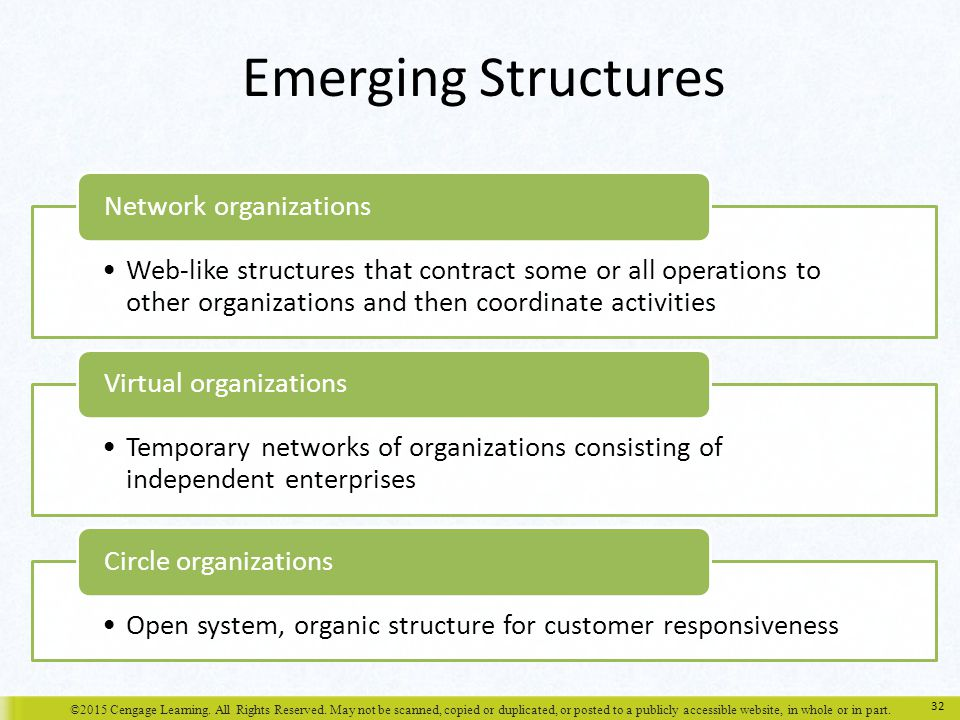 Emerging Structures Network organizations