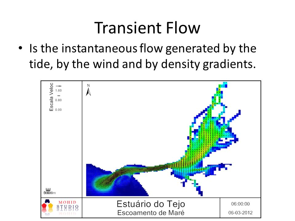 Transient Flow Is the instantaneous flow generated by the tide, by the wind and by density gradients.
