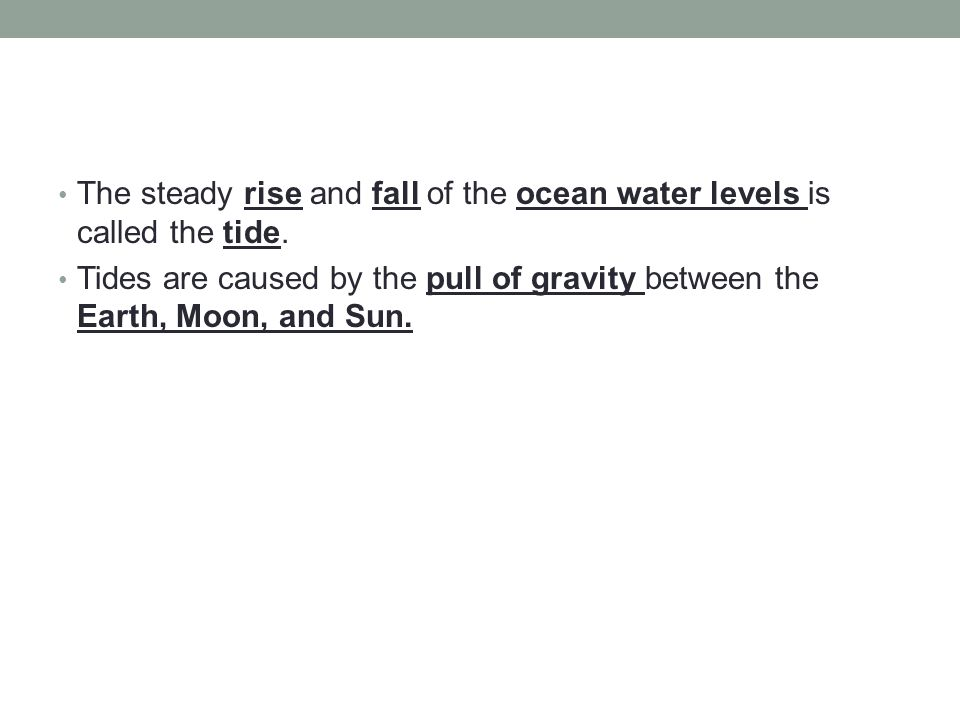 The steady rise and fall of the ocean water levels is called the tide.