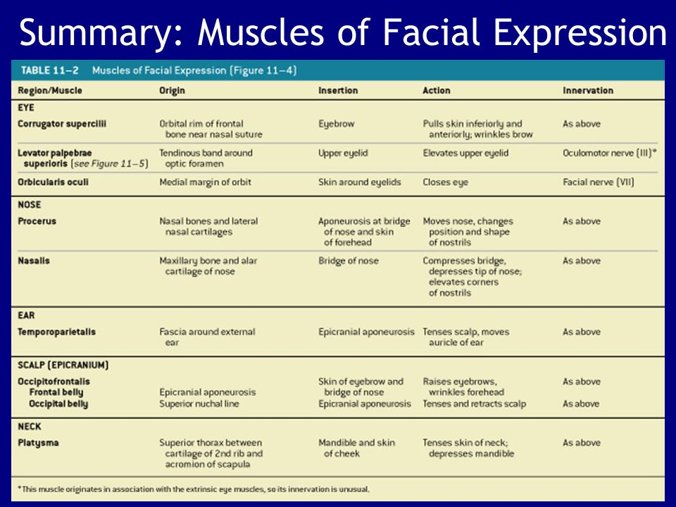 The Action of facial muscles