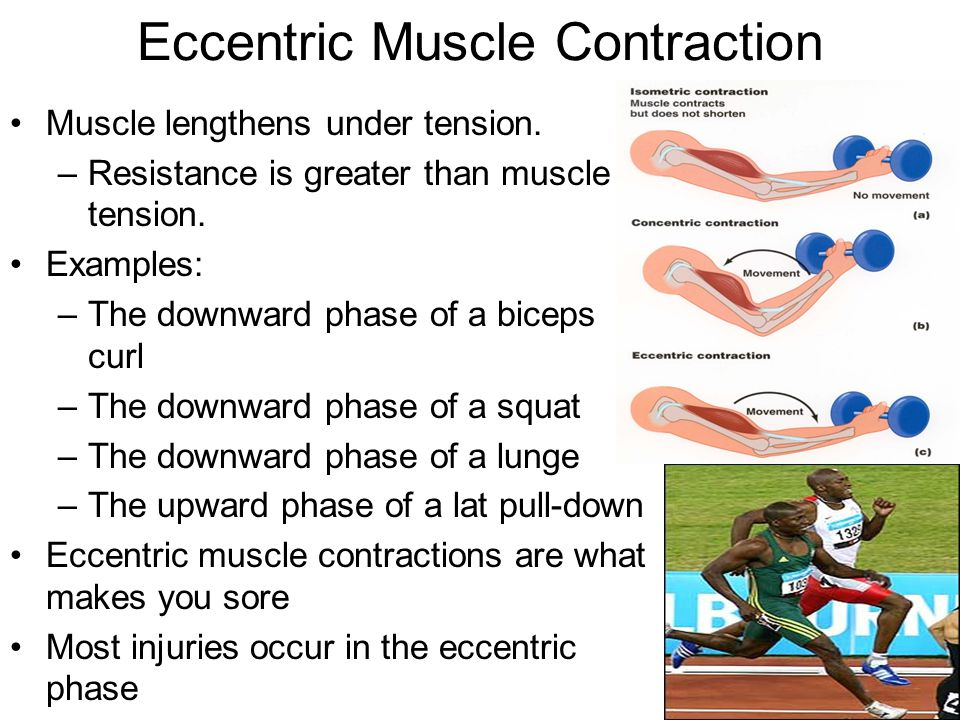 Isometric Contraction Sporting Example Muscles: Actions, Move...