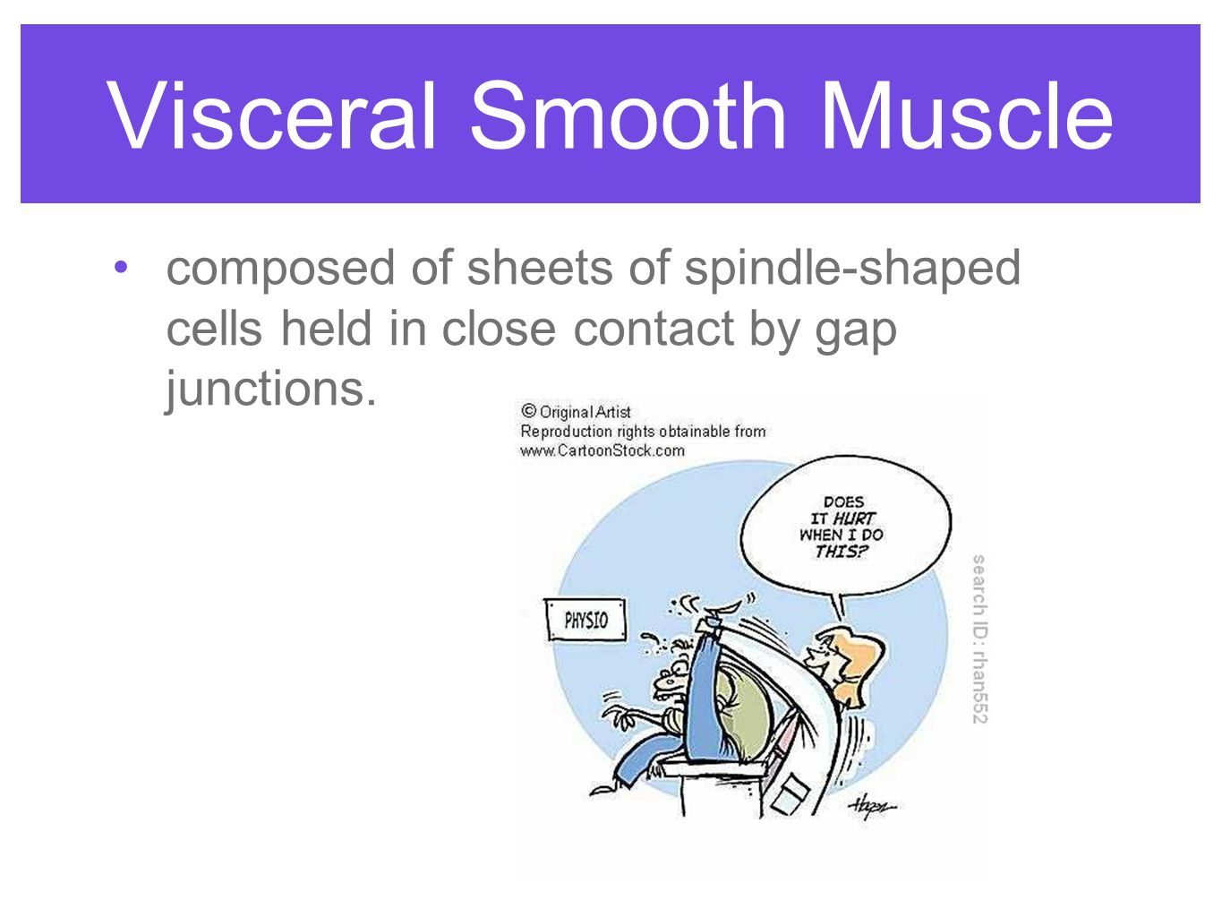 anatomy & physiology of the muscular system - ppt download