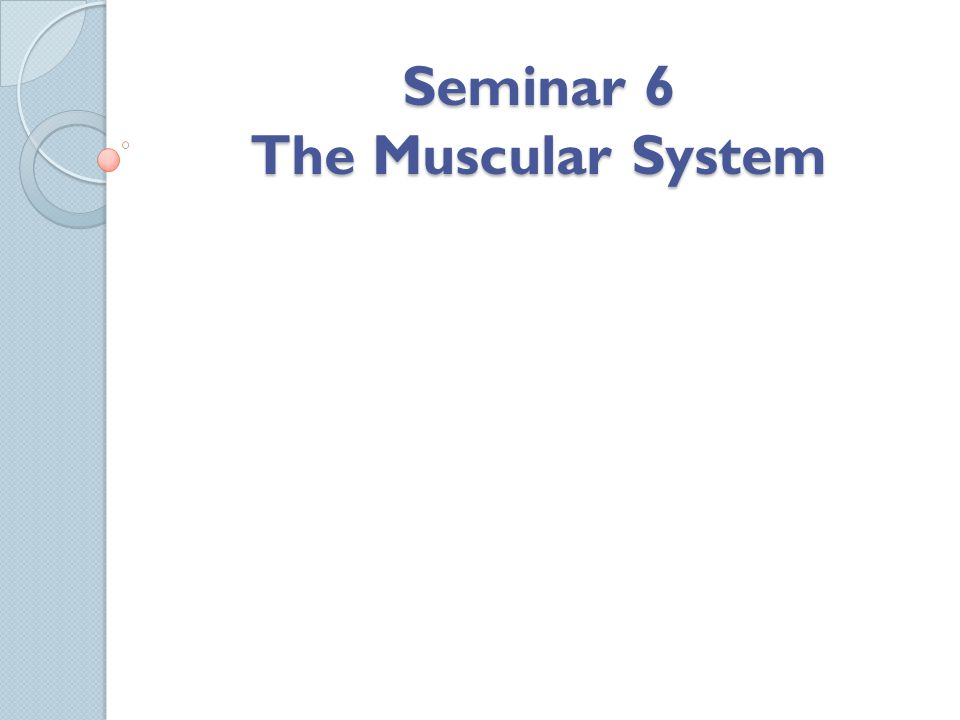 Seminar 6 The Muscular System