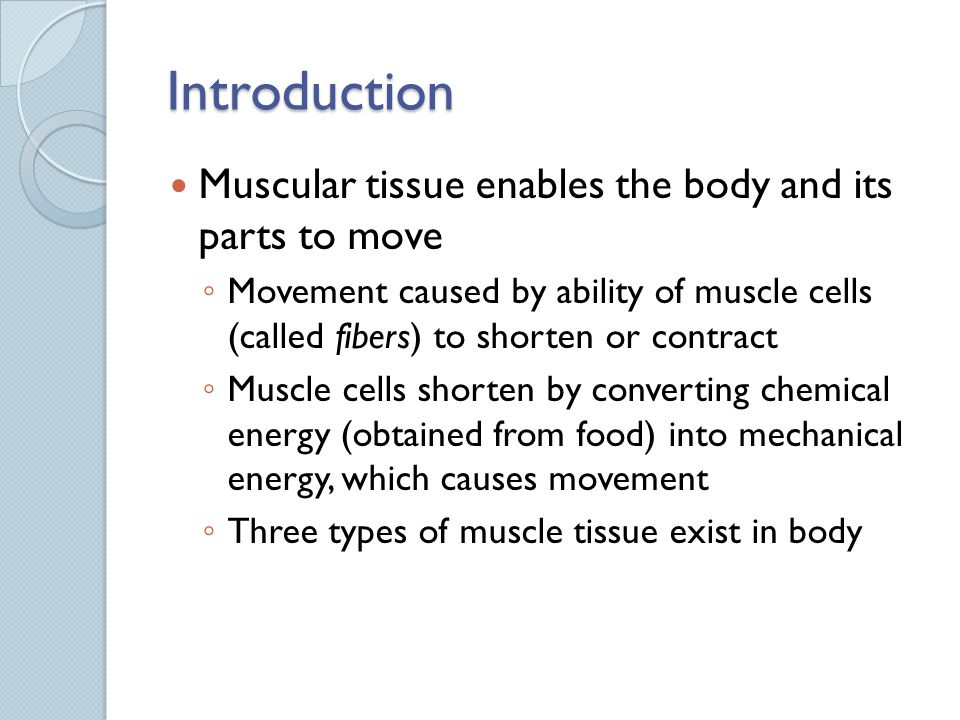 Introduction Muscular tissue enables the body and its parts to move
